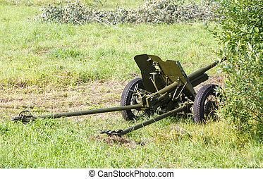 disguised Soviet field gun 45mm on a green field
