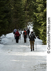 Tourists walking on hiking path in Chocholowska valley in...