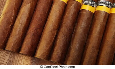 cigars Still-life in a sunny day - cigars , Still-life in a...