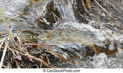 dry twigs grass flowing twig nature waterfall water boils...