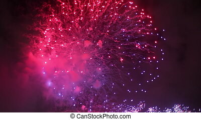 Pink Violet Fireworks Sydney - Big pink and violet midnight...
