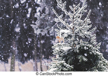 snow-covered fir-tree with gingerbread cookie - Snowy scene...