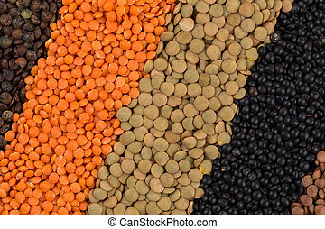 mix of lentils - Mix of various color legumes lentils for...