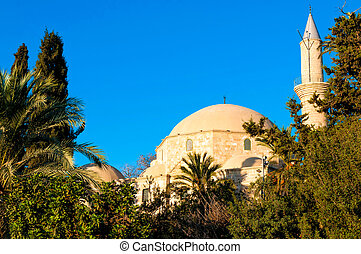 Hala Sultan Tekke or the Mosque of Umm Haram Larnaca, Cyprus...
