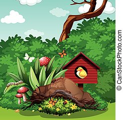 Bird and bugs in the garden illustration