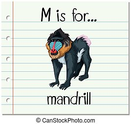Flashcard letter M is for mandrill illustration