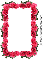 Pink rose border or frame - Pretty pink rose border or frame...