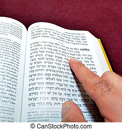 Jewish prayer book - Jewish man finger reads from Jewish...