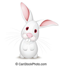 Little rabbit - Little white rabbit isolated on white...