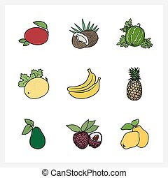 Tropical Exotic Fruit,Fruit Growing on a Trees, Flat Design...