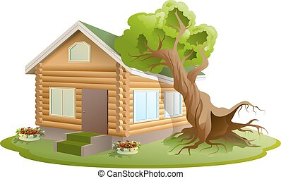 Hurricane tree fell on house Property insurance Illustration...