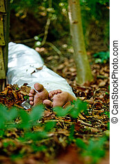 Bare feet of a murder victim hidden in woodland with the...