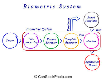 Diagram of Biometric System