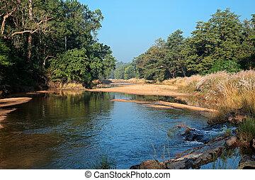 Kanha National Park - India