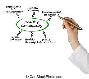 diagrama, de, sano, comunidad,