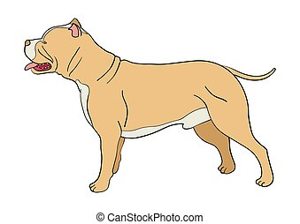 Cartoon illustration of pit bull dog isolated on white