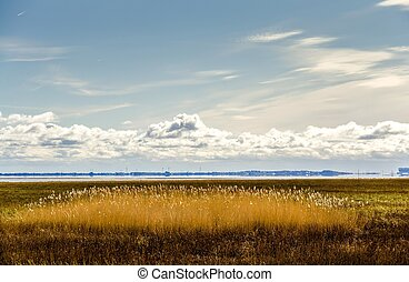 Morecambe Bay, Cumbria, England - View across grassland to...