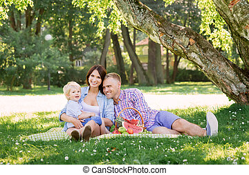 Family enjoying a picnic in the park - Family enjoying their...