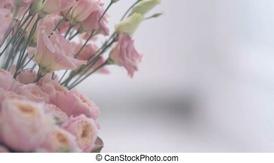 Gorgeous pink flowers. slow motion