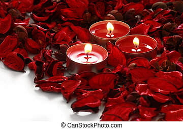 Red rose petals and candles on a white background