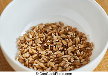Wheat germ in a white bowl