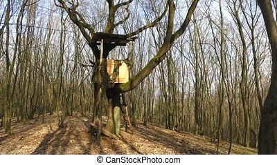 Box Hunting Stand In The Forest