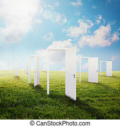 Opportunity - White doors open on a green meadow