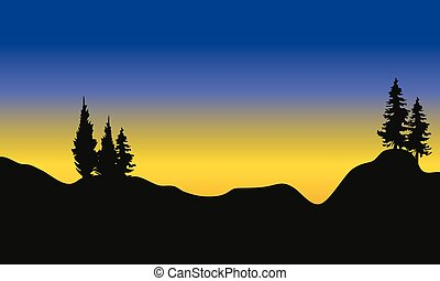 Silhouette of fir trees on the mountain