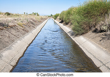 Irrigation ditch in the plain of the River Esla, in Leon...