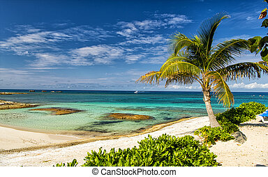 Great Stirrup Cay beach - Beautiful bahamian beach with...
