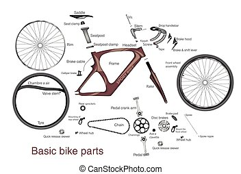 infographic of main bike parts with the names - infographic...