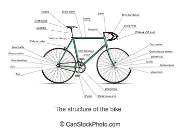 Infographic of the structure of bike - Infographic of the...