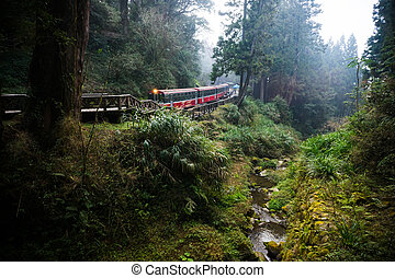 Alishan forest railway is famous for tourist attraction.