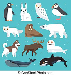 Polar animals flat icons - Polar animals icons. Polar birds...