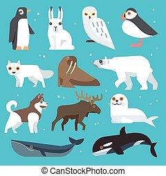 Polar animals flat icons - Polar animals icons. Polar birds...