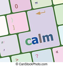 calm key on computer keyboard button vector illustration