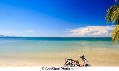 Panorama of Scooter Standing on Edge of Beach by High Palm -...