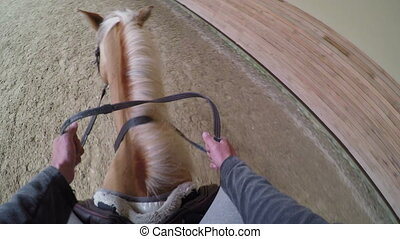 """learning horse riding course, rider point of view, gopro"""