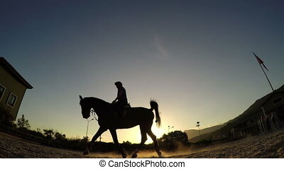"""Horse jumping hurdle at sunset, silhouette rider"""