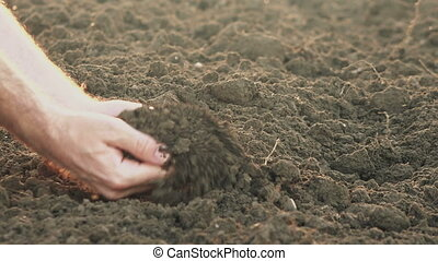 Farmer holding pile of soil - Male farmer holding pile of...