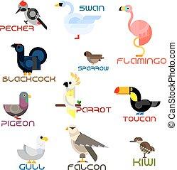 Cartoon colorful flat birds set