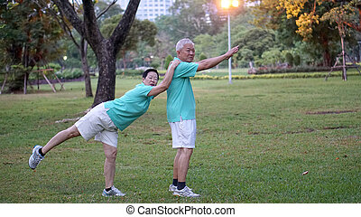 Asian senior couple happy in park