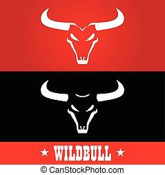 Bull. Wild bulls, Wild bulls head with the bold horn