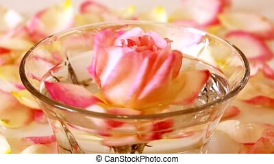 White Rose in a bowl of water and petals - Infused water...