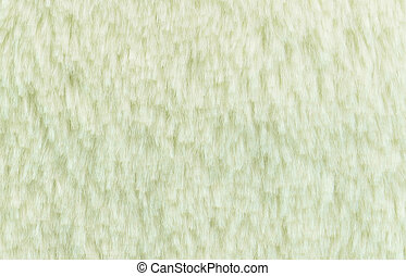 White fur background and texture