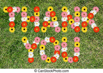 Thank you with flowers flower meadow grass nature