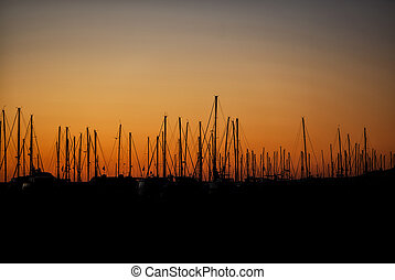 Silhouette of Sailboats at Sunrise - Silhouette of a row of...