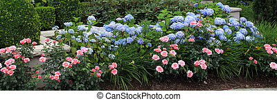 Summer flower bed. - Summer flower bed with roses and...