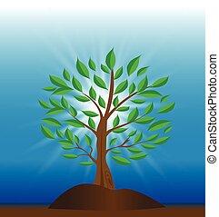 Tree ecology background - Tree ecology with sunburst blue...