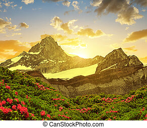 Zinalrothorn in the sunset